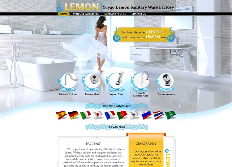 9Dzine Portfolio Global Website Design Yuyao Lemon